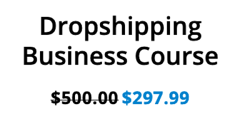 sara finance dropshipping business course price tag of $297 discounted from $500